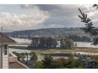 Photo 20: 394 CUMBERLAND Street in New Westminster: Fraserview NW House for sale : MLS®# V1087948