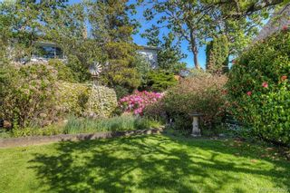 Photo 5: 517 Comerford St in VICTORIA: Es Saxe Point House for sale (Esquimalt)  : MLS®# 786962