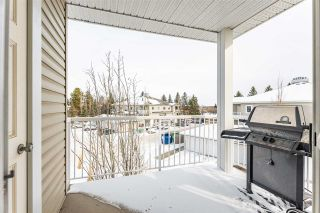 Photo 23: 46D 79 BELLEROSE Drive: St. Albert Carriage for sale : MLS®# E4229583