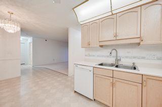 Photo 15: 401 10915 21 Avenue in Edmonton: Zone 16 Condo for sale : MLS®# E4249968