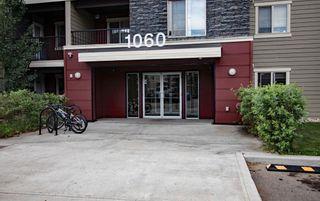 Photo 36: 215 1060 McConachie Boulevard in Edmonton: Zone 03 Condo for sale : MLS®# E4257715