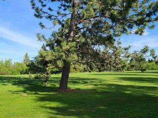 Photo 47: 9545 74 Avenue in Edmonton: Zone 17 House for sale : MLS®# E4246998