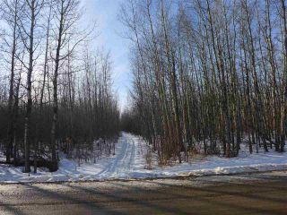 Photo 8: 50 Avenue & RR 281: Rural Wetaskiwin County Land Commercial for sale : MLS®# E4194443
