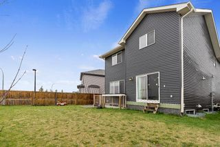 Photo 33: 155 Martha's Meadow Close NE in Calgary: Martindale Detached for sale : MLS®# A1117782
