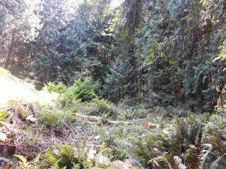 Photo 8: LOT 0 NAYLOR Road in Sechelt: Sechelt District Land for sale (Sunshine Coast)  : MLS®# R2480346