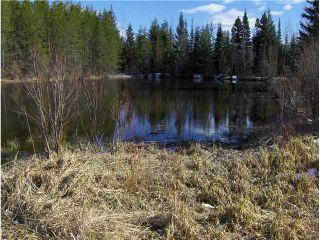 """Photo 3: 5350 SEABROOKE PIT Road in Quesnel: Quesnel - Rural North House for sale in """"TEN MILE LAKE"""" (Quesnel (Zone 28))  : MLS®# N214729"""