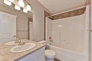 Photo 26: 4075 Allan Cres SW in Edmonton: Ambleside House Half Duplex for sale : MLS®# E4151549