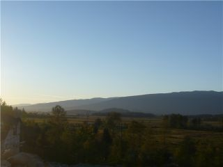 """Photo 67: 22699 136A Avenue in Maple Ridge: Silver Valley House for sale in """"FORMOSA PLATEAU"""" : MLS®# V1053409"""