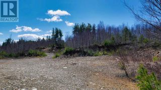 Photo 11: acreage 930 Road in Buckfield: Vacant Land for sale : MLS®# 202108244