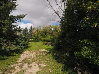 Photo 12: 50 Centre Street in MacDonald: Other for sale : MLS®# 202022673