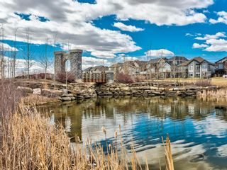 Photo 48: 229 Kingsmere Cove SE: Airdrie Detached for sale : MLS®# A1121819
