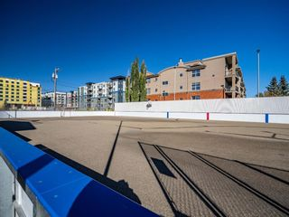 Photo 33: 407 495 78 Avenue SW in Calgary: Kingsland Apartment for sale : MLS®# A1151146
