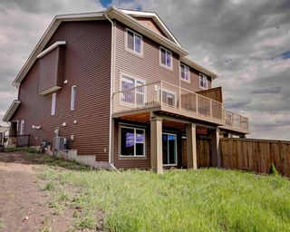 Photo 33: 171 AUBURN MEADOWS Place SE in Calgary: Auburn Bay House for sale : MLS®# C4119383