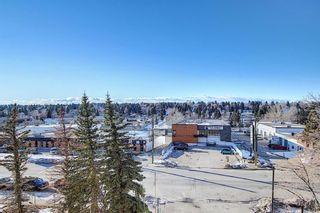 Photo 21: 505 9800 Horton Road SW in Calgary: Haysboro Apartment for sale : MLS®# A1060584
