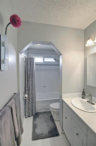 Photo 11: 2735 41A Avenue SE in Calgary: Dover Detached for sale : MLS®# A1082554