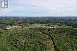 Photo 17: 550 Cookville Road in Out of Board: Agriculture for sale : MLS®# NB050249