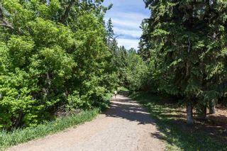 Photo 26: 14388 Park Drive in Edmonton: Zone 10 House for sale : MLS®# E4249586
