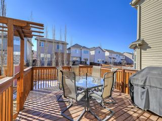 Photo 38: 148 Copperfield Common SE in Calgary: Copperfield Detached for sale : MLS®# A1079800