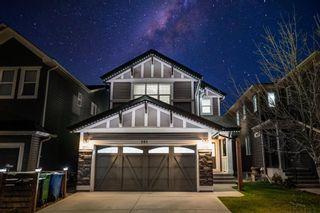 Main Photo: 101 Evansfield Park NW in Calgary: Evanston Detached for sale : MLS®# A1157327