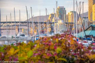 """Photo 10: 1006 IRONWORK PASSAGE in Vancouver: False Creek Townhouse for sale in """"Marine Mews"""" (Vancouver West)  : MLS®# R2420267"""