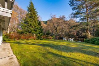 "Photo 12: 41500 MEADOW Avenue in Squamish: Brackendale House for sale in ""Brackendale"" : MLS®# R2529478"