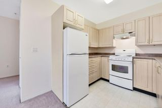 Photo 5: 210 1485 Garnet Rd in : SE Cedar Hill Condo for sale (Saanich East)  : MLS®# 871220
