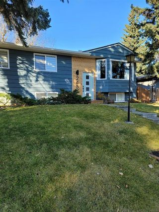 Main Photo: 245 Allan Crescent SE in Calgary: Acadia Detached for sale : MLS®# A1155271
