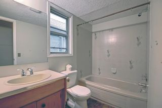 Photo 37: 37 Martingrove Way NE in Calgary: Martindale Detached for sale : MLS®# A1152102