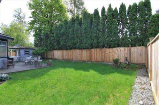 Photo 15: 20498 124A AVENUE in Maple Ridge: Northwest Maple Ridge House for sale : MLS®# R2284229