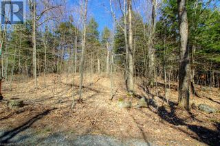 Photo 35: LOT#70 PINE Crescent in Huntsville: Vacant Land for sale : MLS®# 40109977