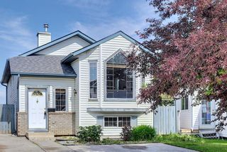 Main Photo: 52 San Diego Green NE in Calgary: Monterey Park Detached for sale : MLS®# A1129626
