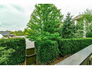 "Photo 25: 216 8915 202 Street in Langley: Walnut Grove Condo for sale in ""Hawthorne"" : MLS®# R2573295"