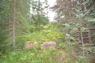 "Photo 29: LOT 1 HISLOP Road in Smithers: Smithers - Rural Land for sale in ""Hislop Road Area"" (Smithers And Area (Zone 54))  : MLS®# R2491414"