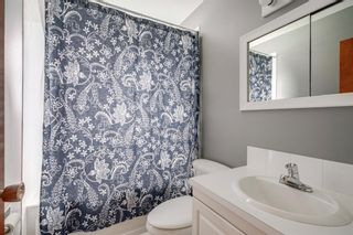 Photo 18: 3531 35 Avenue SW in Calgary: Rutland Park Detached for sale : MLS®# A1059798