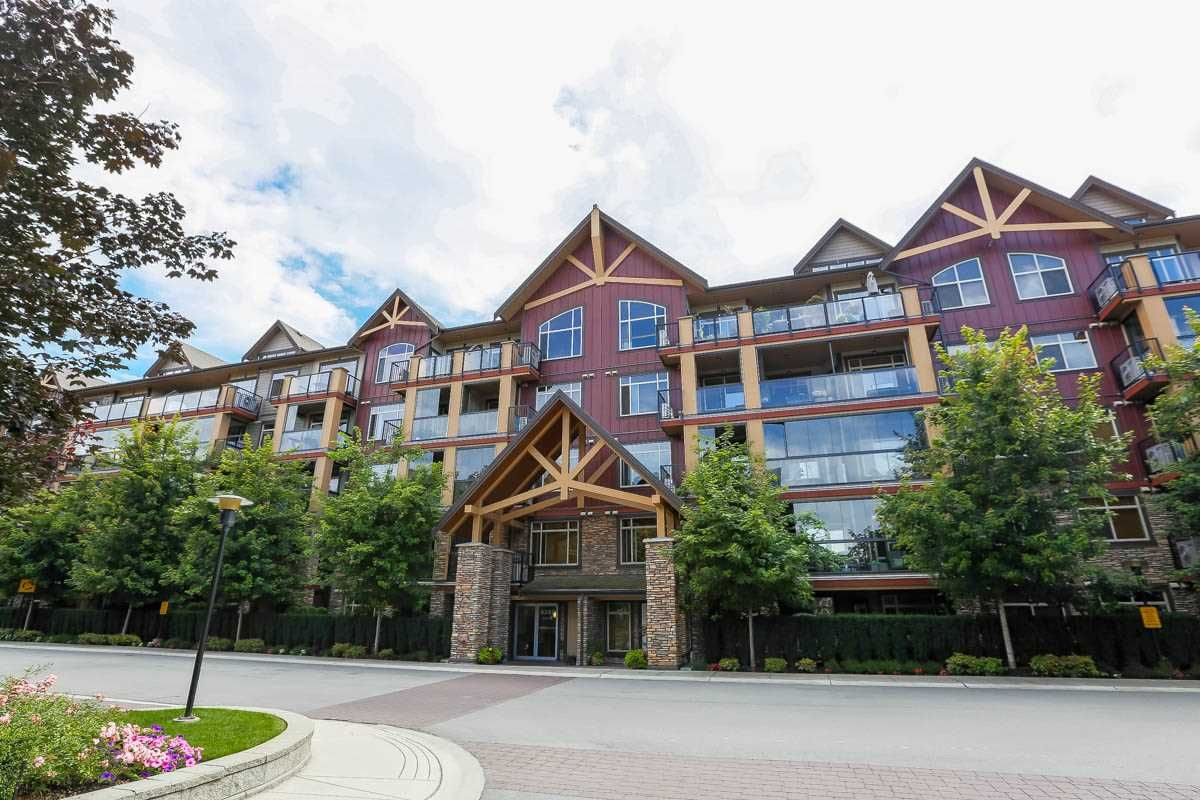 """Main Photo: 226 8288 207A Street in Langley: Willoughby Heights Condo for sale in """"YORKSON CREEK"""" : MLS®# R2096294"""