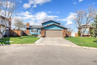 Photo 49: 420 Templeby Place NE in Calgary: Temple Detached for sale : MLS®# A1107183