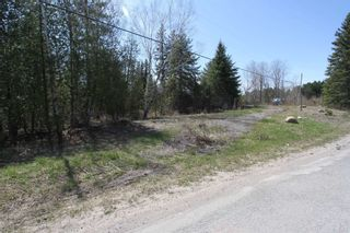 Photo 10: 259 County Rd 41 Road in Kawartha Lakes: Rural Bexley Property for sale : MLS®# X5210398