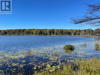 Photo 10: 300 HAMILTON LAKE Road in South River: Vacant Land for sale : MLS®# 40159931