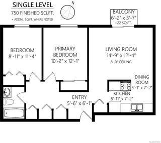 Photo 21: 202 904 Hillside Ave in : Vi Hillside Condo for sale (Victoria)  : MLS®# 874220