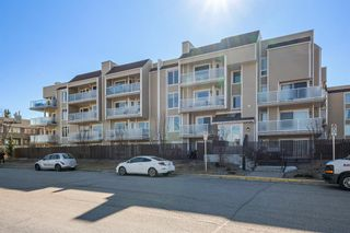 Main Photo: 407D 3717 42 Street NW in Calgary: Varsity Apartment for sale : MLS®# A1092645
