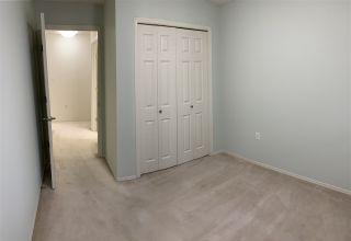Photo 38: 203 17511 98A Avenue in Edmonton: Zone 20 Condo for sale : MLS®# E4224086