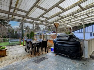 Photo 17: 4123 Holland Ave in : SW Strawberry Vale House for sale (Saanich West)  : MLS®# 866922