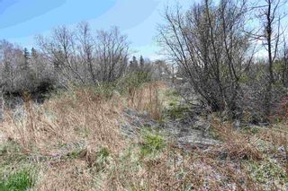 Photo 4: Lots North Range Cross Road in Barton: 401-Digby County Vacant Land for sale (Annapolis Valley)  : MLS®# 202110298
