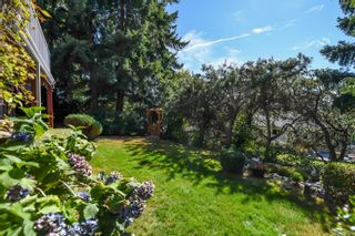 Photo 57: 1115 Evergreen Ave in : CV Courtenay East House for sale (Comox Valley)  : MLS®# 885875