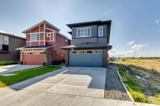 Photo 44: 28 Walgrove Landing SE in Calgary: Walden Detached for sale : MLS®# A1137491