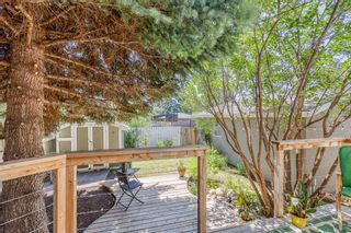 Photo 32: 531 99 Avenue SE in Calgary: Willow Park Detached for sale : MLS®# A1019885