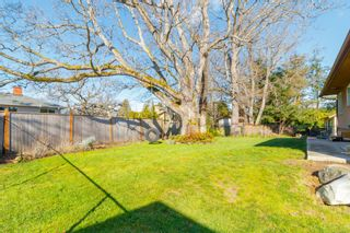 Photo 36: 3970 Bow Rd in : SE Mt Doug House for sale (Saanich East)  : MLS®# 869987