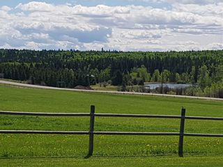 Photo 44: 5224 Township Road 292: Rural Mountain View County Detached for sale : MLS®# A1096755