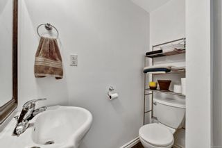 Photo 25: 5036 Lochside Dr in : SE Cordova Bay House for sale (Saanich East)  : MLS®# 858478