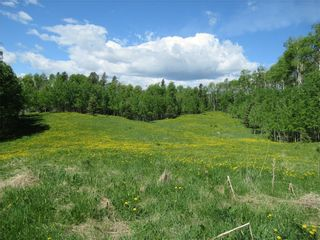 Photo 39: 351035A Range Road 61: Rural Clearwater County Detached for sale : MLS®# C4297657